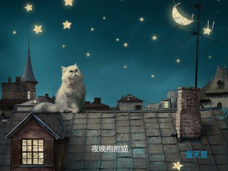 Name:  skylan_nightcat.jpg Views: 104 Size:  50.4 KB