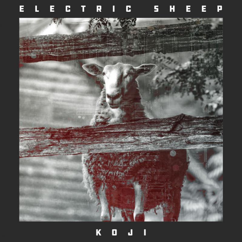 Name:  Electric-Sheep.jpg Views: 9 Size:  85.0 KB